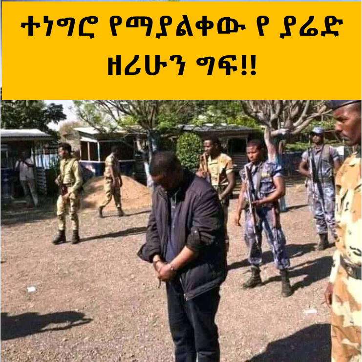 Ethiopia Today- Untold Crimes Stories of Yared Zerihun
