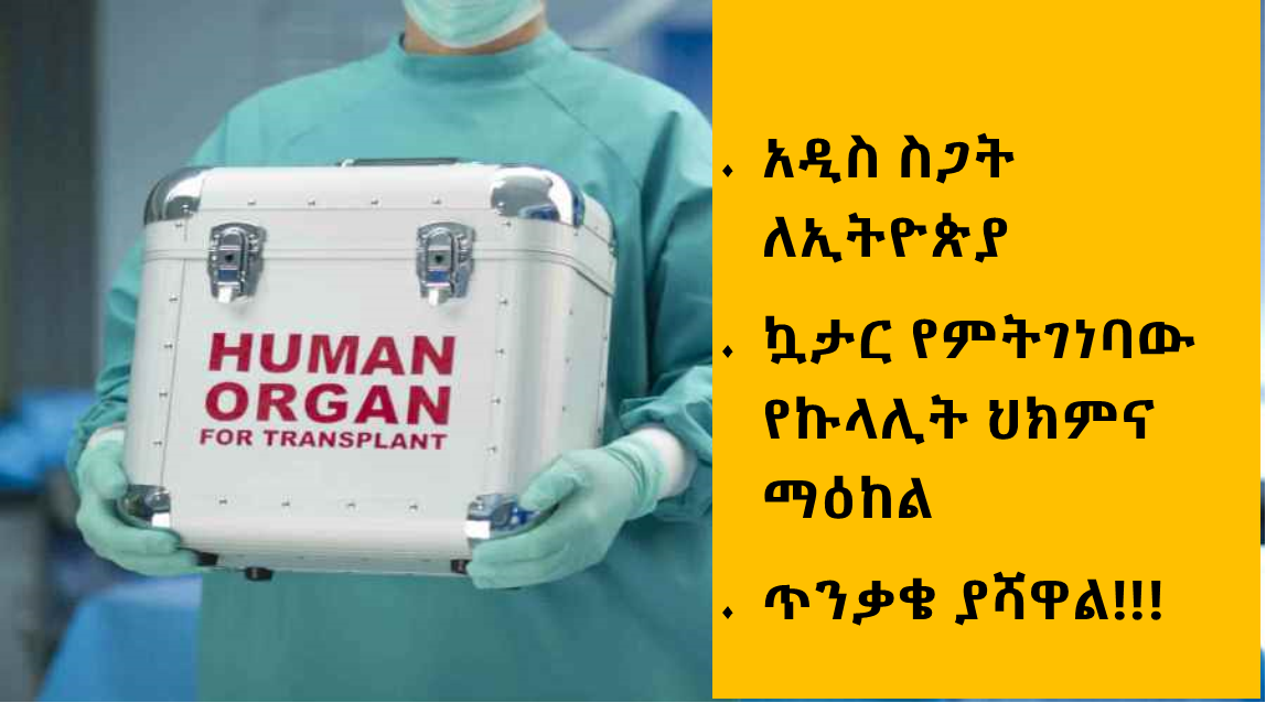 Ethiopian relation- QATAR will built Kidney medical center. Hope & Fear!