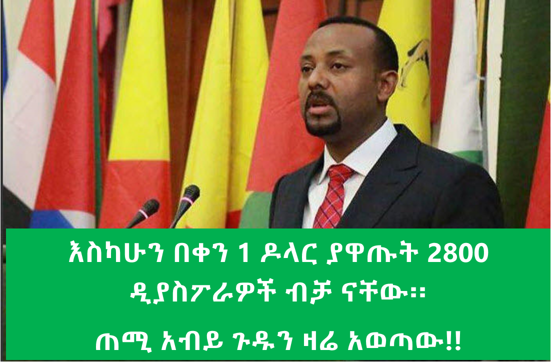 """Ethiopian Diasporas fail to fulfill their word"" said PM Abiy Ahmed"