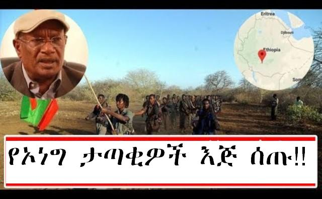 23 fighters operating on the OLF peacefully agreed to fight in the north Shoa Zone