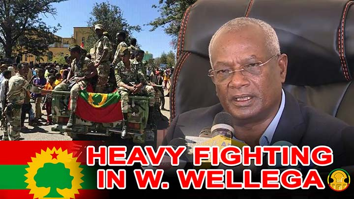 OLF Chairman, Dawud Ibsa said there is heavy fighting in Western Wellega