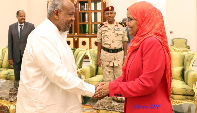 Ethiopia's Minister Of Defense Holds Talks With Djibouti President