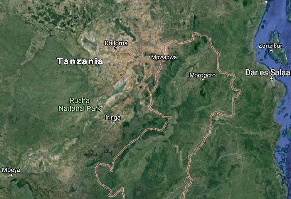 14 Ethiopian migrants reportedly found dead in Tanzania